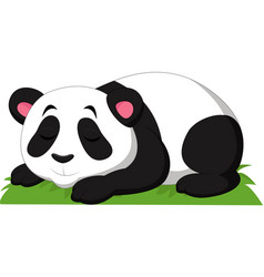 cartoon panda sleeping isolated on white backgroun vector image
