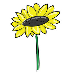 Cartoon picture beautiful sunflower or vector