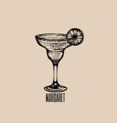 cocktail margarita hand drawn sketch margarita vector image