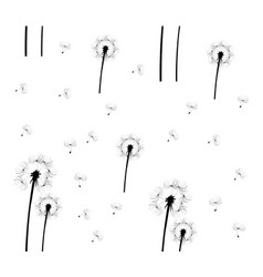 dandelion seamless vector image