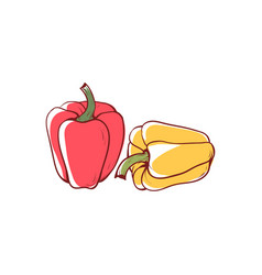 ripe pepper isolated icon vector image