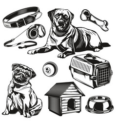set dogs and its apps elements vector image