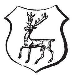 Stag tripping are the motion of deer vintage vector