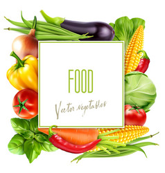 menu with vegetables and square card for text vector image vector image