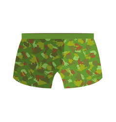 military underpants gift for men military vector image