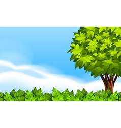 A summer scenery with green plants vector