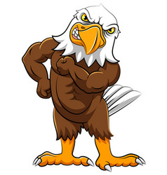 Angry eagle in standing pose vector