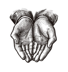 folded arms cupped or open hands sketch vintage vector image
