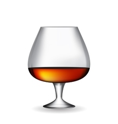 Glass Collector 50 year-old French Cognac on White vector