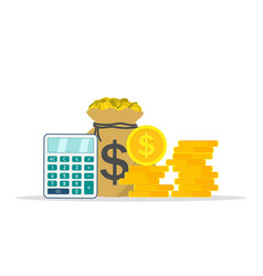 Save and invest money icon calculate tax or vector