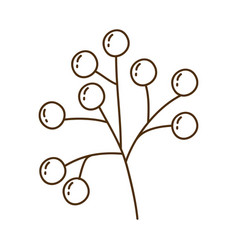 Brown silhouette of stem with seeds vector