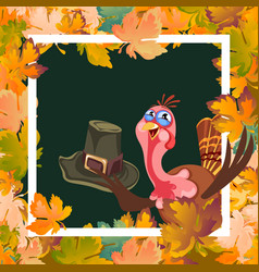 cartoon thanksgiving turkey character holding hat vector image