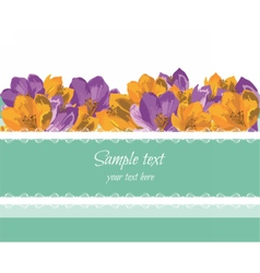 Greeting Card with Spring Summer colorful Flowers vector image