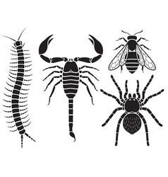Poisonous insects set vector