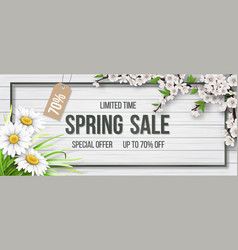 spring sale frame chamomile wood blooming branch vector image