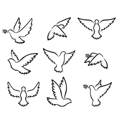 Collection of dove birds logo for peace concept an vector