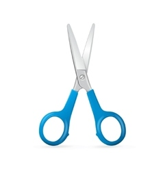 Shiny Metal Scissors vector image vector image