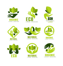 Eco organic logo design set premium quality vector