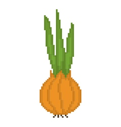 Pixel onion vector