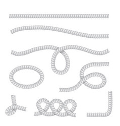 realistic rope isolated vector image
