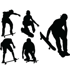skateboards vector image