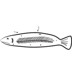 Sorry fish vector
