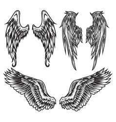 Wings bird feather black white tattoo set 3 vector