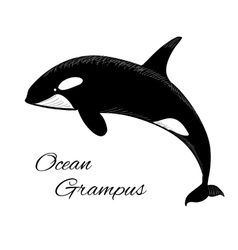 Grampus icon in doodle style on white background vector image