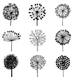 Set of Dandelions vector image vector image