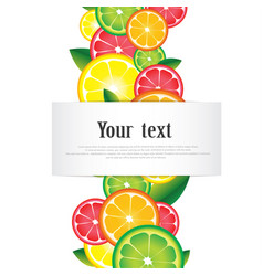 citrus fruits ornament frame with space for text vector image