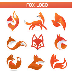 creative fox animal vector image