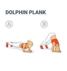 Dolphin plank female home workout exercise guide vector