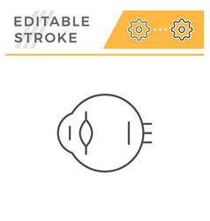 eyeball line icon vector image