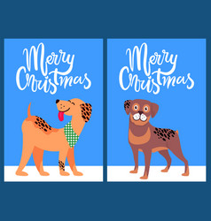 Merry christmas congratulation from happy pets vector