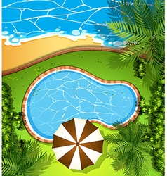 Ocean scene and swimming pool vector