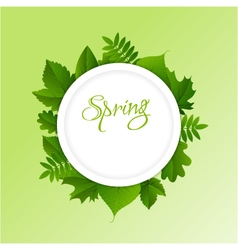 Spring frame background vector