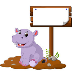 hippo with blank sign vector image