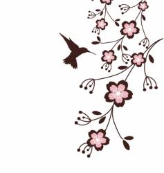 spring cherry blossoms vector image vector image