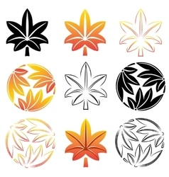 The stylized set maple leaves Japanese symbolism vector image vector image