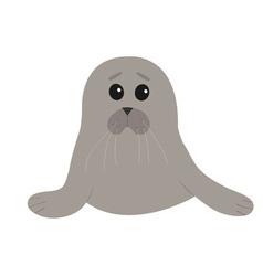 Cute seal pup baby harp Cartoon character White vector image vector image