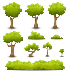 forest trees hedges and bush set vector image vector image