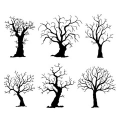 collection trees silhouettes tree vector image