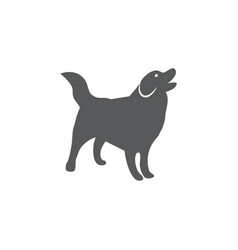 dog icon on white background vector image
