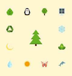 flat icons night tree conservation and other vector image