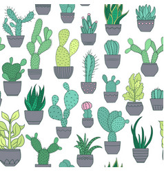 Potted cactus succulent plants seamless pattern vector