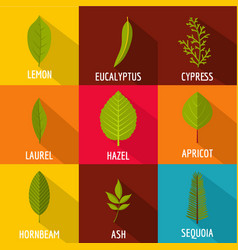 tree leave icons set flat style vector image