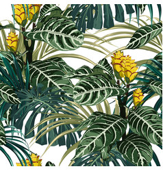 tropical exotic tender lovely yellow flowers vector image