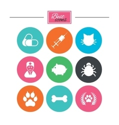Veterinary pets icons Paw syringe and bone vector