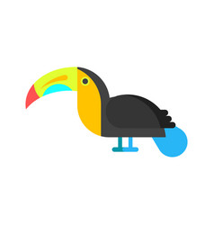 flat style of toucan vector image vector image