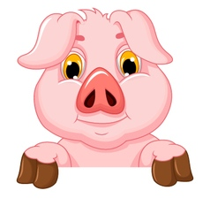 pig cartoon with blank board vector image